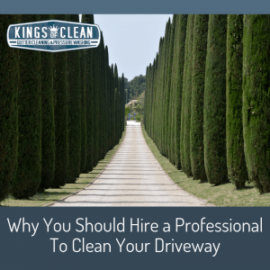 Why You Should Hire a Professional To Clean Your Driveway