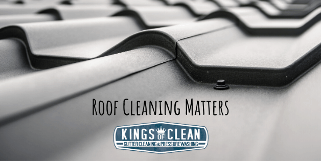 Roof Cleaning Matters